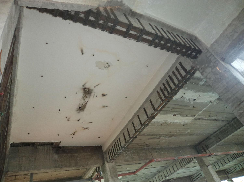是利用结构胶将钢板和混凝土粘接